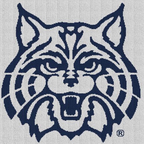 Arizona Wildcats - C2C Written Graphghan Pattern - 01 (240x240)